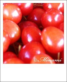 cherry2